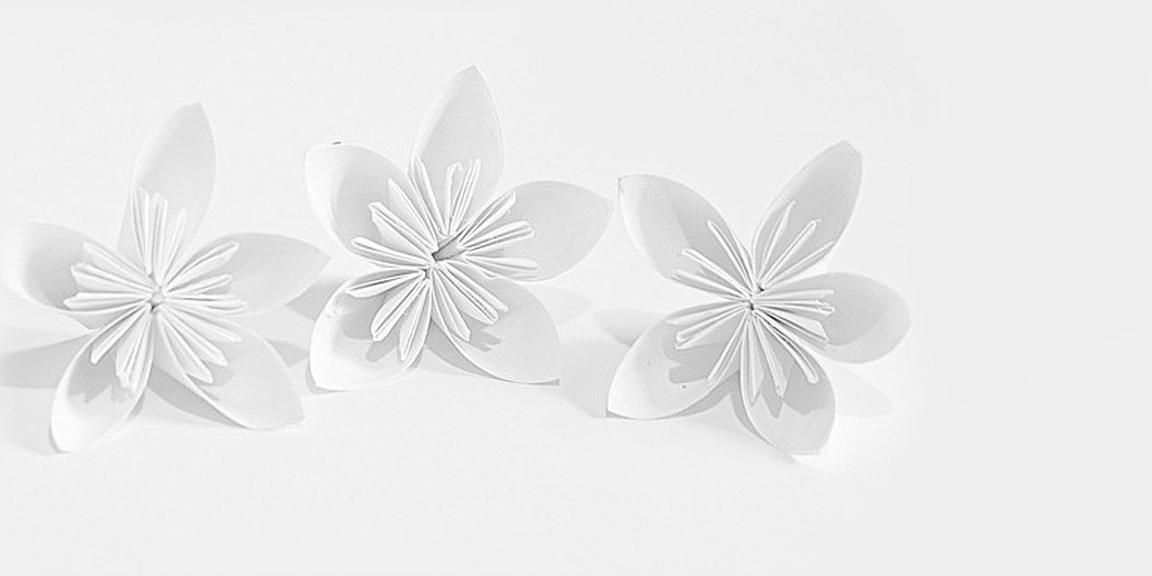 about - paper flowers